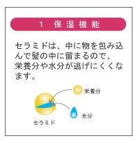 セラミド 1.保湿機能 .jpg